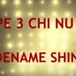 Type 3 Chi Nu Kai – premium MT in WoT Blitz